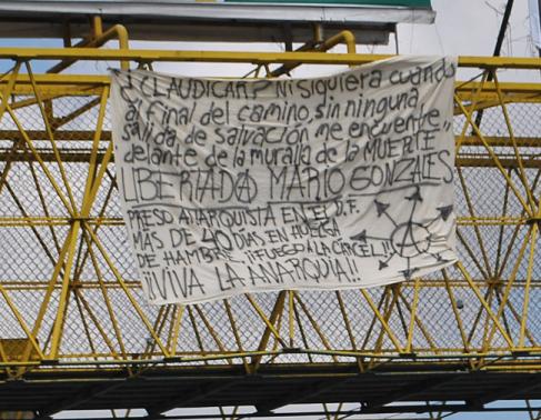 Solidaridad Mario González