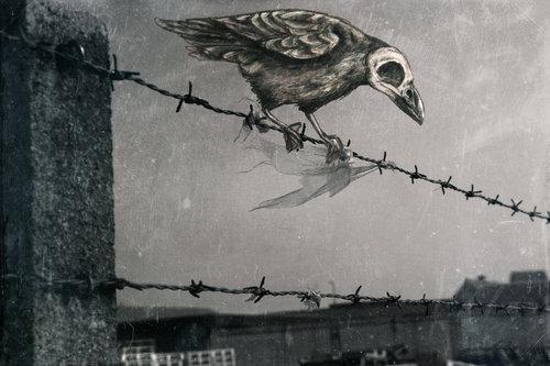 Pájarx