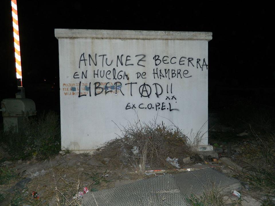 Soli Cartagena 2