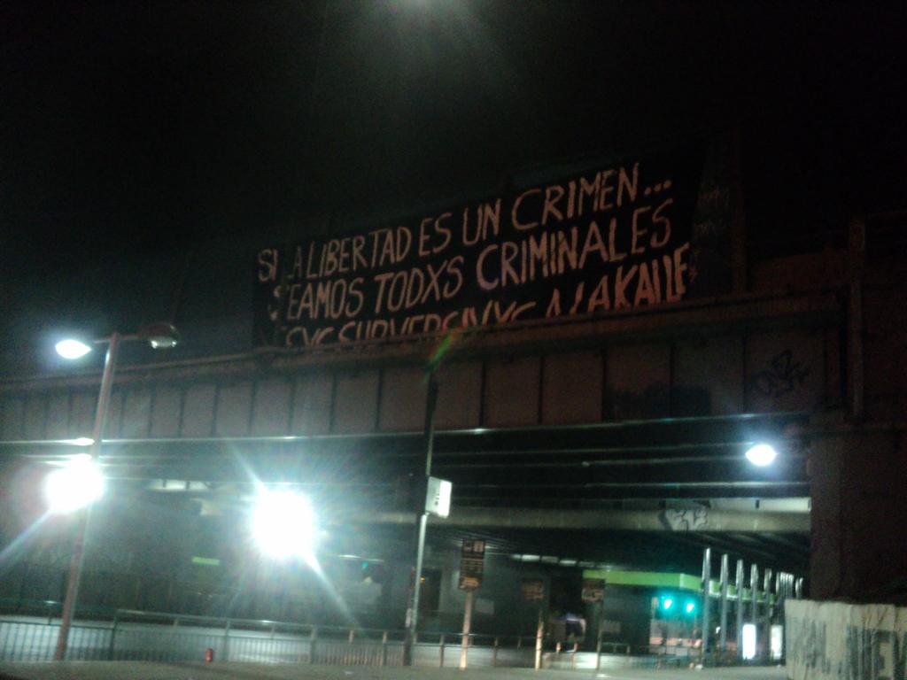 Soli Chile pancarta