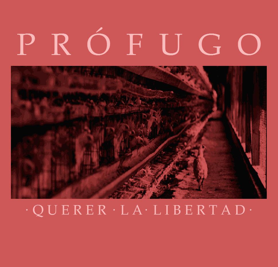 Prófugo - Querer la libertad - cover