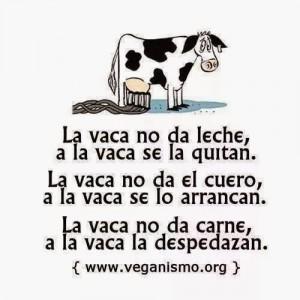 LECHE DE VACA2