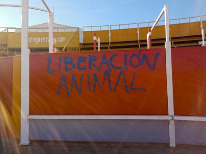 Spain_bullring_Aug16b